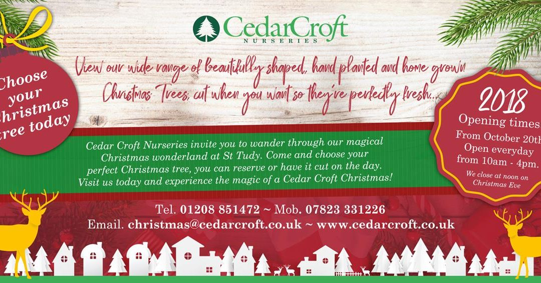 Cedar Croft Nurseries Open now for Wonderful Christmas trees!